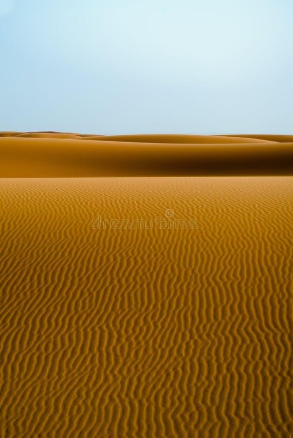 沙丘 图库摄影