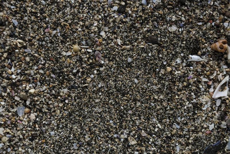 沙从海的在城市海滩被找到 沙粒汇集特写镜头视图在作为背景的晴朗的夏日 ?? 免版税库存图片