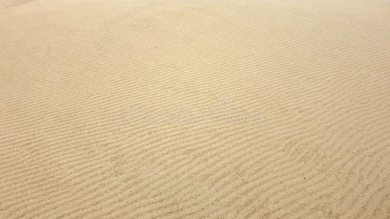 沙和风 免版税库存图片