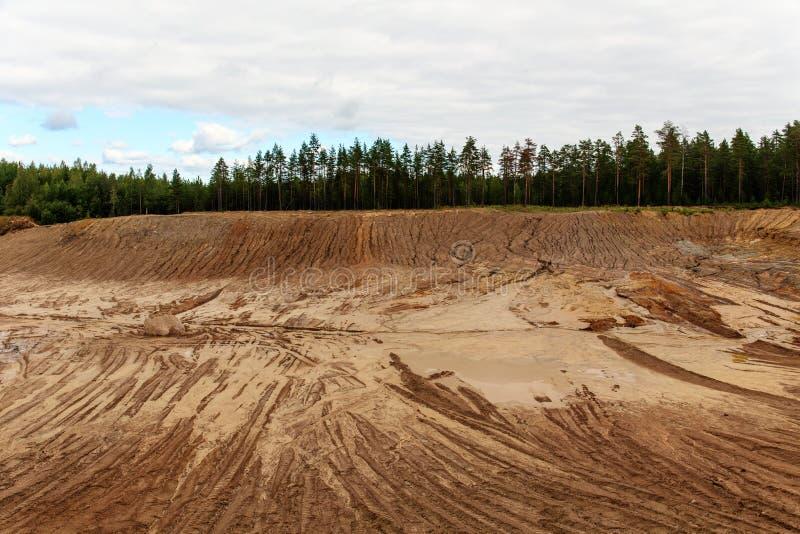 沙坑在杉木森林里 图库摄影