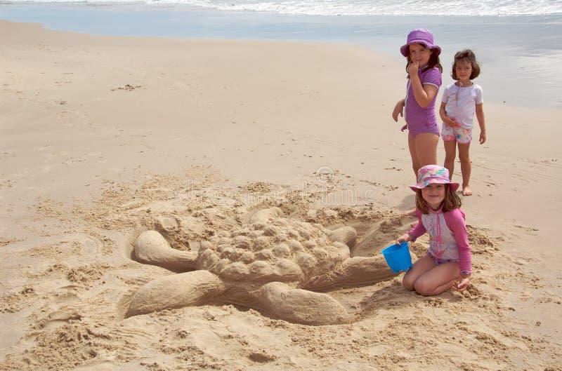 沙子乌龟 库存图片