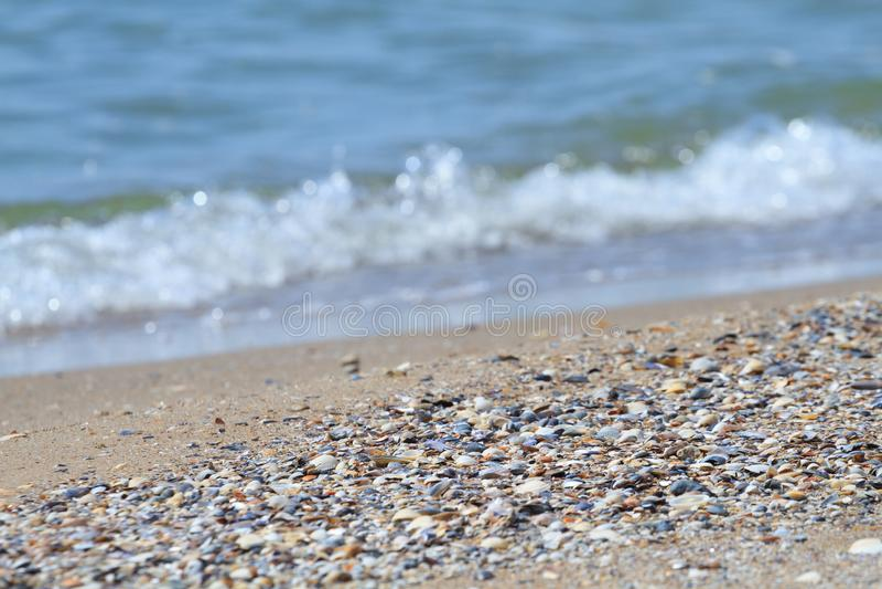 沙子和壳在海 图库摄影