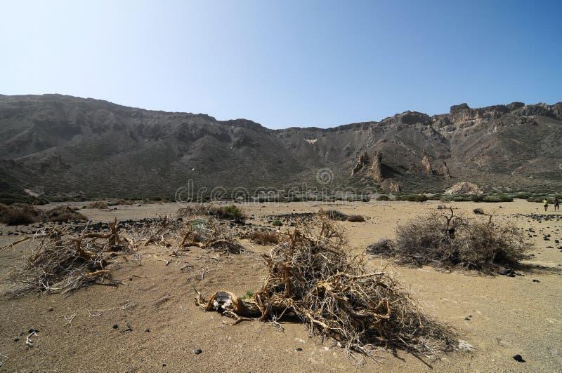 沙子和岩石沙漠 免版税库存图片