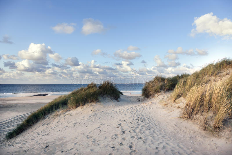 沙子和沙丘在有bl的荷兰临近vlieland海滩  库存照片