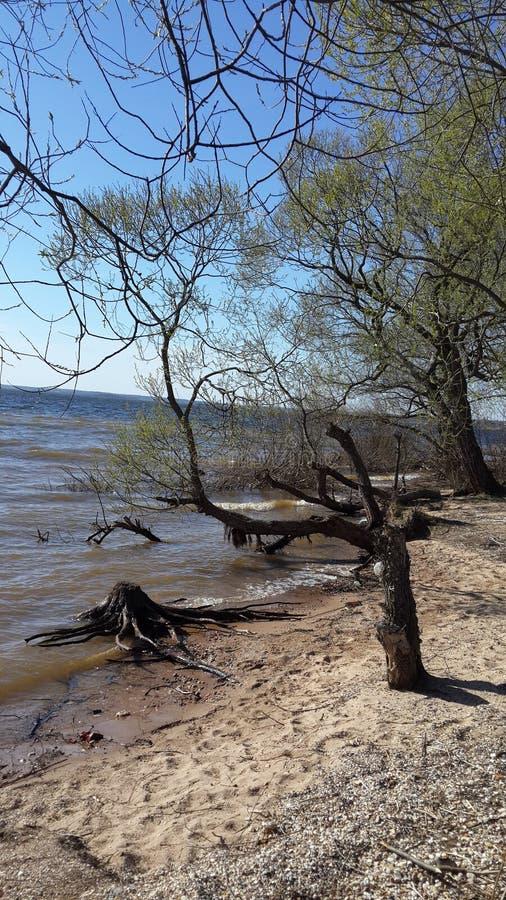 沙子和河 免版税库存照片