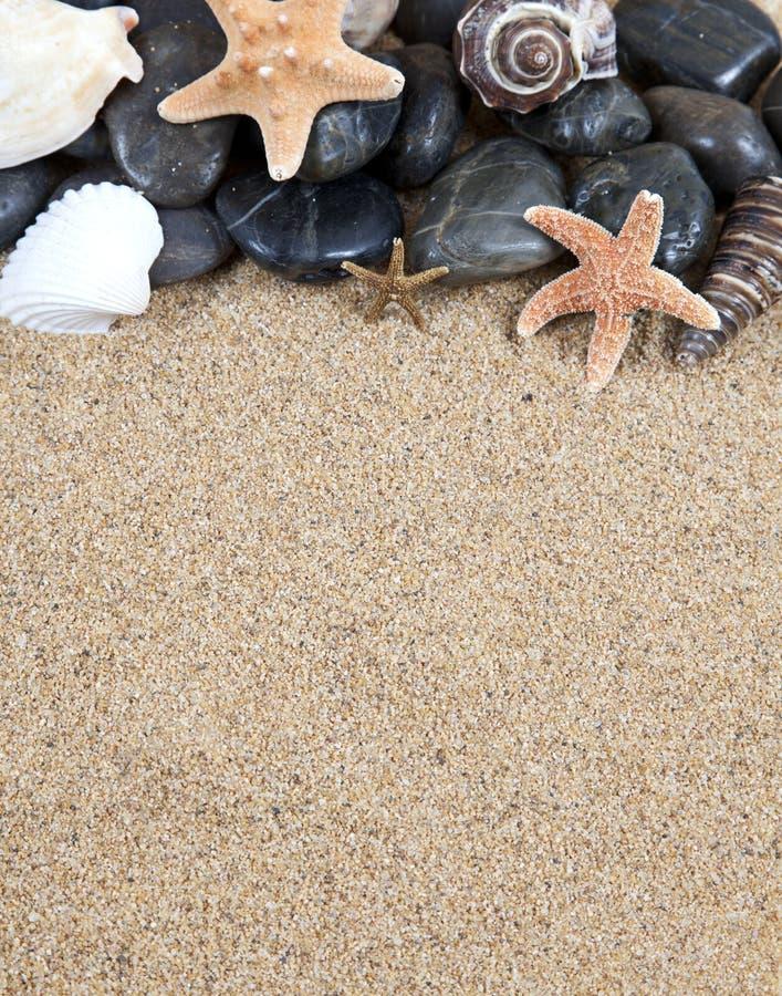 沙子和海星 免版税库存图片