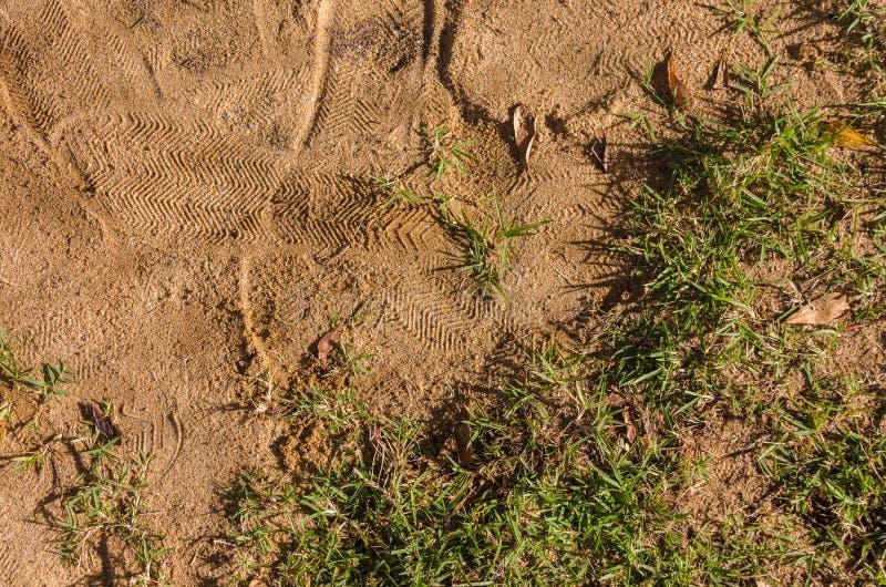 沙子和草 免版税图库摄影
