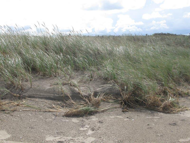沙子和荒地 免版税库存照片