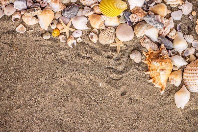 沙子和shekk 库存照片
