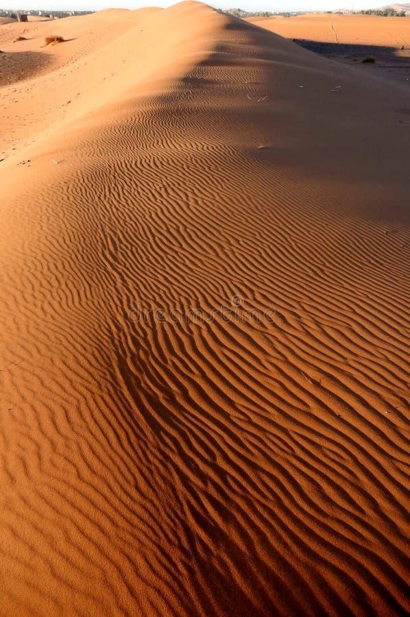 沙子在沙漠撒哈拉大沙漠 免版税库存图片