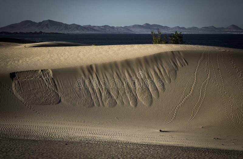 沙子样式在自然公园在科拉莱霍,费埃特文图拉岛,温泉 库存图片