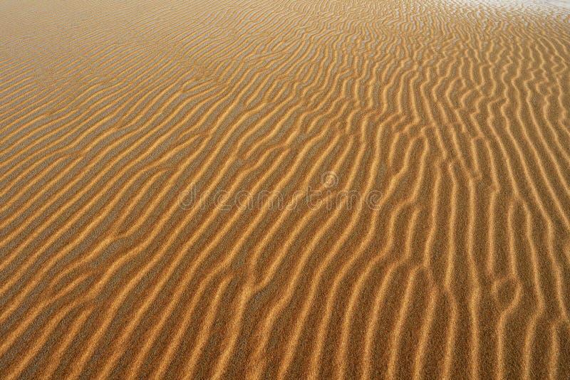 沙子样式,银色湖沙丘 免版税库存图片