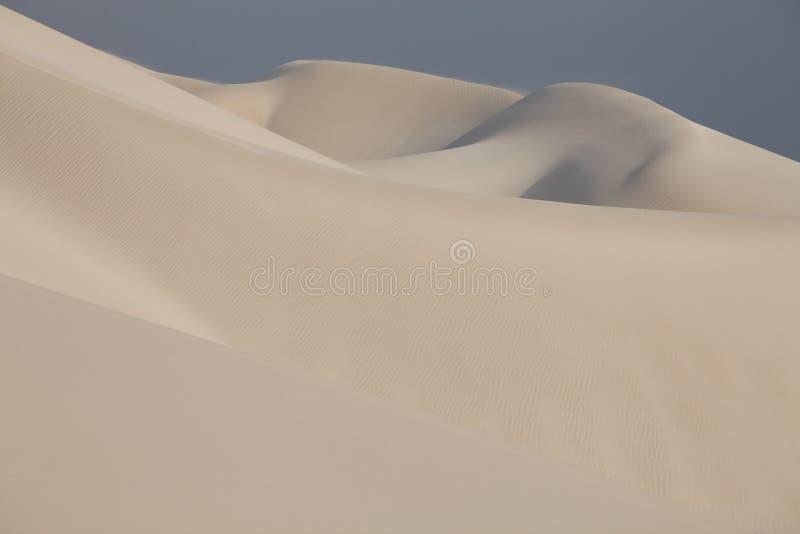 沙子沙漠表面 库存照片