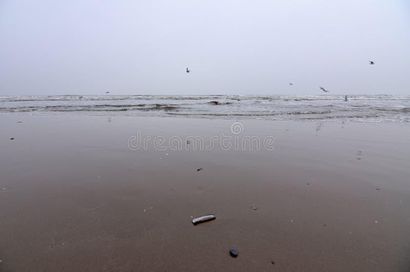 沙子海和雪 免版税图库摄影