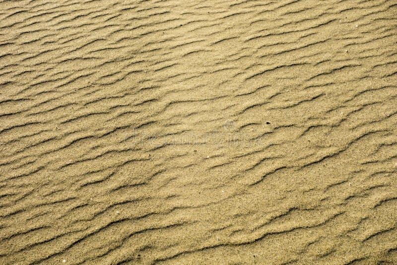 沙子海滩纹理 免版税库存照片