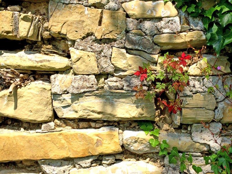 沙子石头老修道院墙壁  免版税库存图片