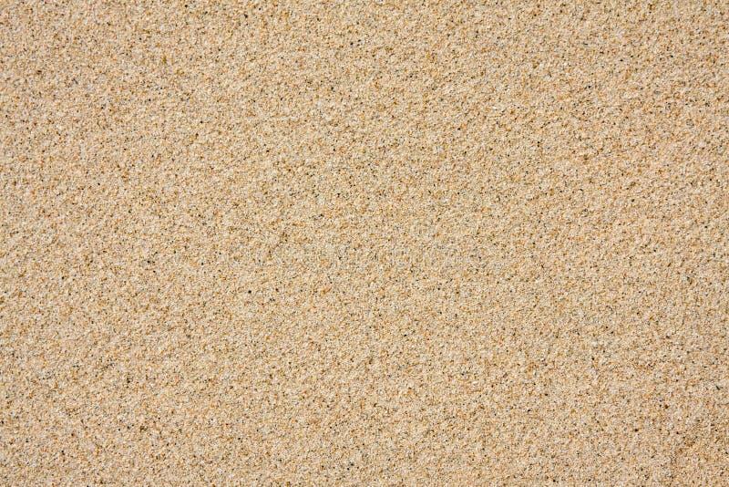 沙子纹理背景 库存图片