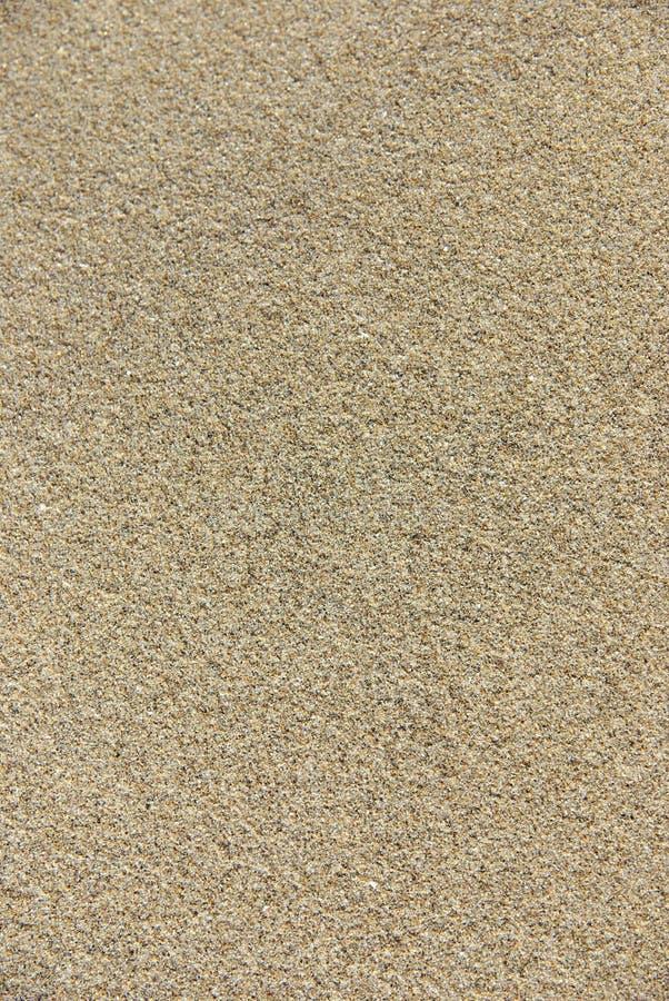 沙子纹理 免版税库存图片