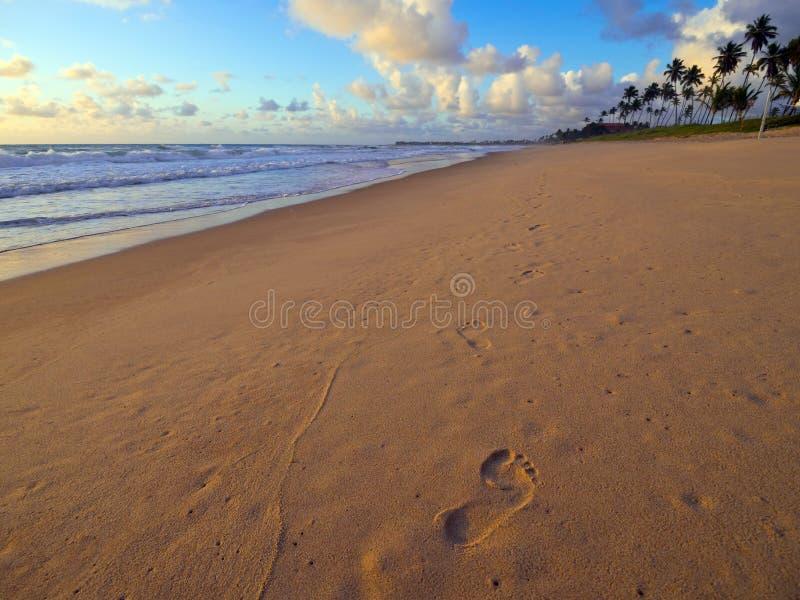 沙子脚印 库存图片