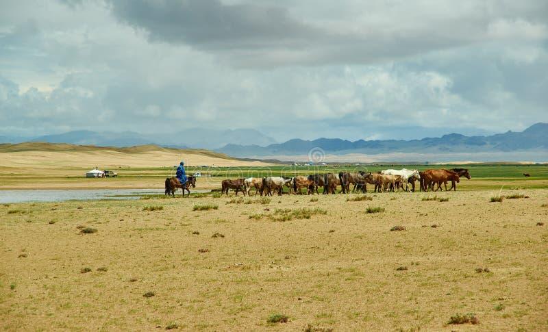 沙子蒙古艾尔斯 库存照片