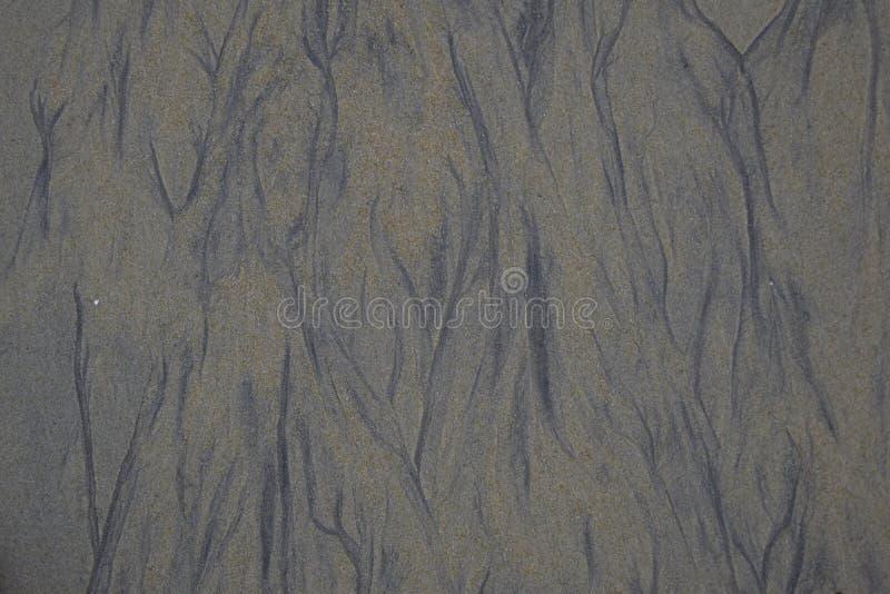沙子,自然背景表面  库存照片