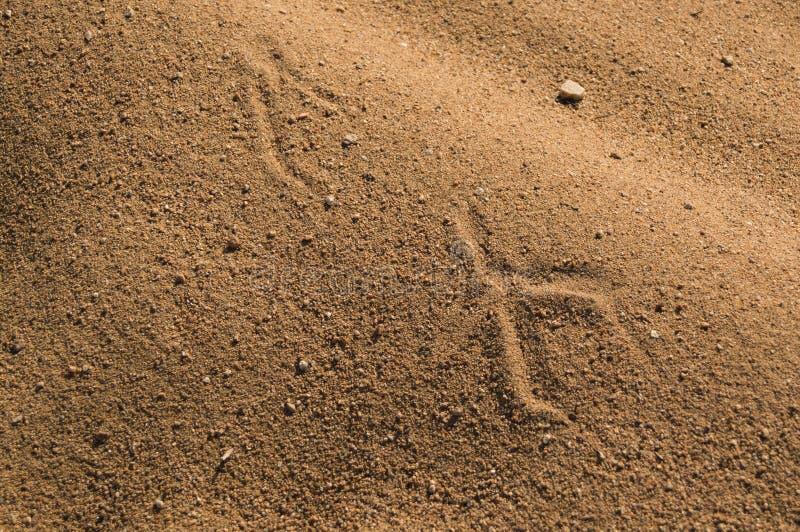 沙子3 库存照片