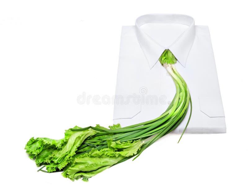 素食领带 库存图片