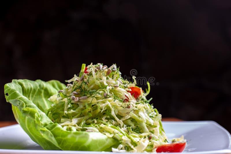 沙拉用圆白菜和莳萝在碗 ?? 免版税图库摄影
