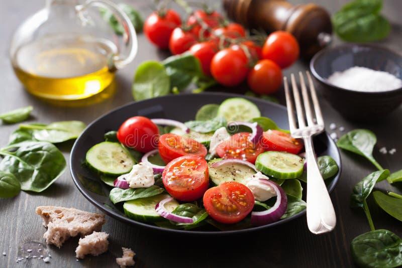 沙拉用蕃茄黄瓜和山羊乳干酪 免版税库存照片