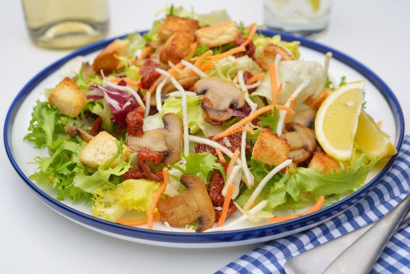 沙拉用蘑菇和油煎方型小面包片 图库摄影