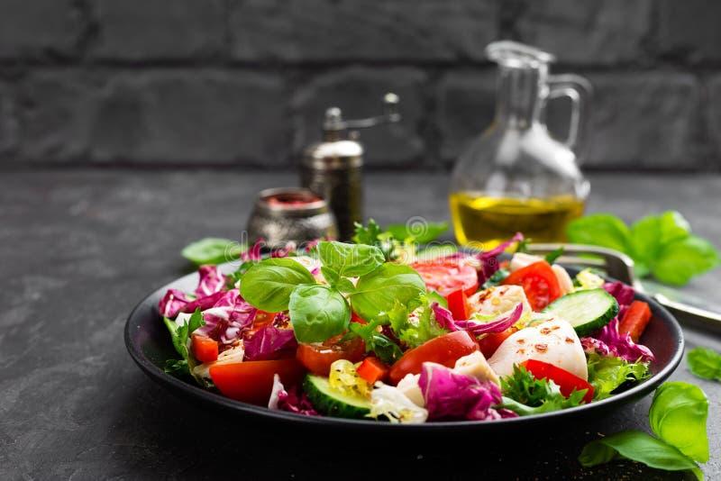 沙拉用鸡肉 新鲜蔬菜沙拉用鸡胸脯与鸡内圆角和新鲜蔬菜的肉沙拉 图库摄影