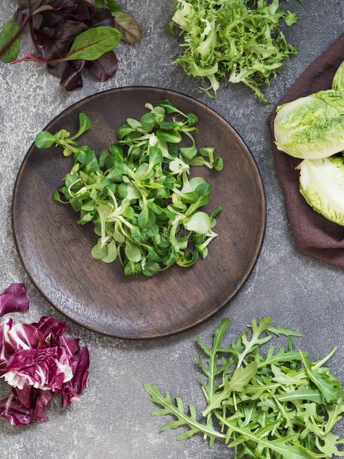 沙拉的各种各样的类型在木板材离开 库存照片