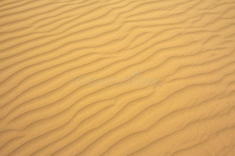 沙波完善的纹理  沙子的样式在海滩的 图库摄影