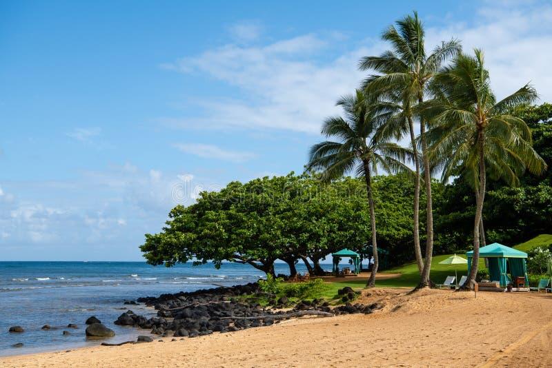 沙滩在Princeville考艾岛,夏威夷 免版税库存图片