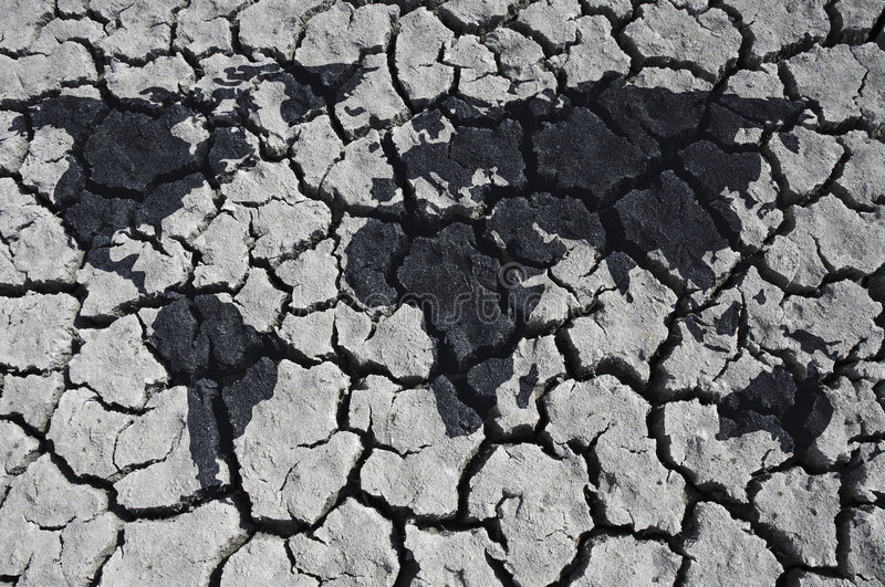 沙漠世界 库存图片
