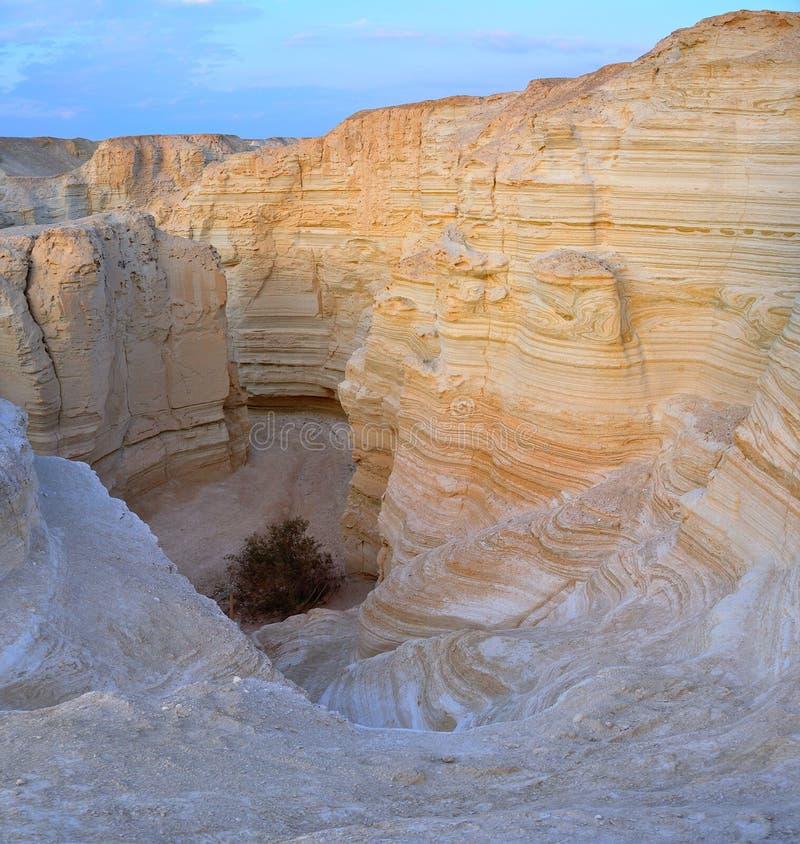 沙漠以色列yehuda 免版税图库摄影