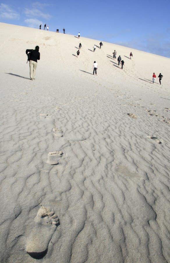 沙漠努力 库存图片
