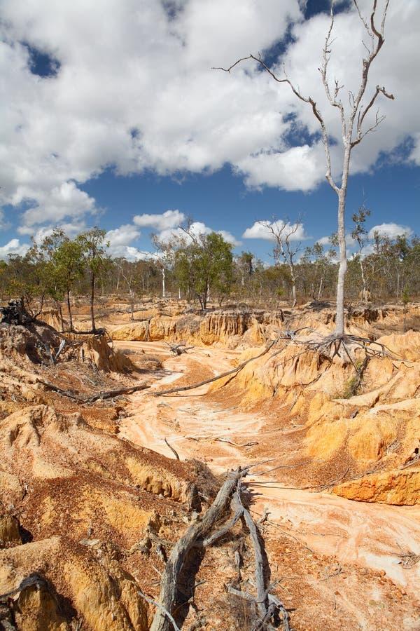 沙漠化侵蚀过度放牧土壤 库存图片