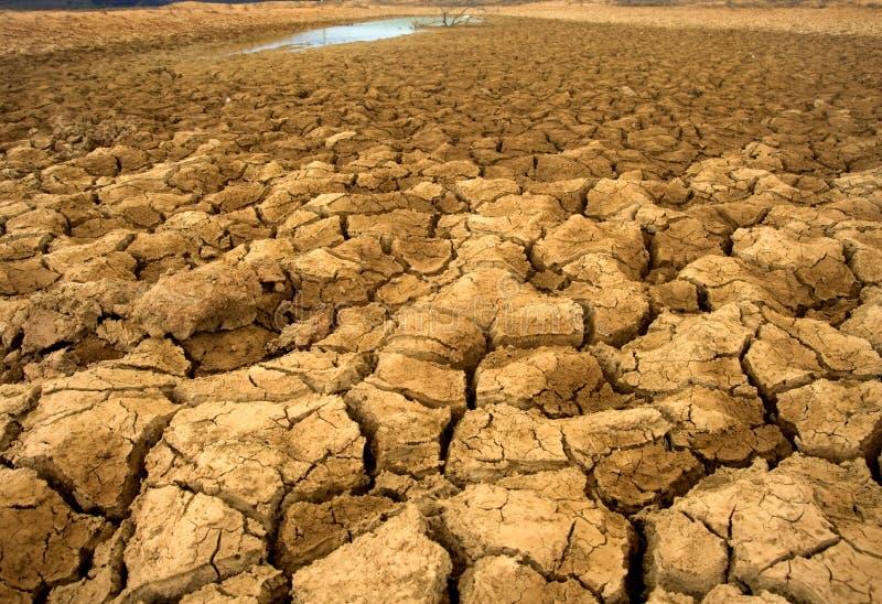 沙漠化 图库摄影