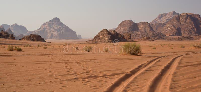 沙漠在早晨-约旦 免版税库存图片