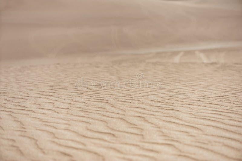 沙漠在Huacachina,秘鲁 特写镜头沙丘 库存图片