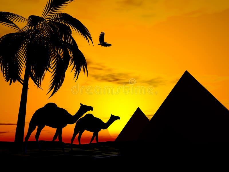 沙漠埃及日落 向量例证