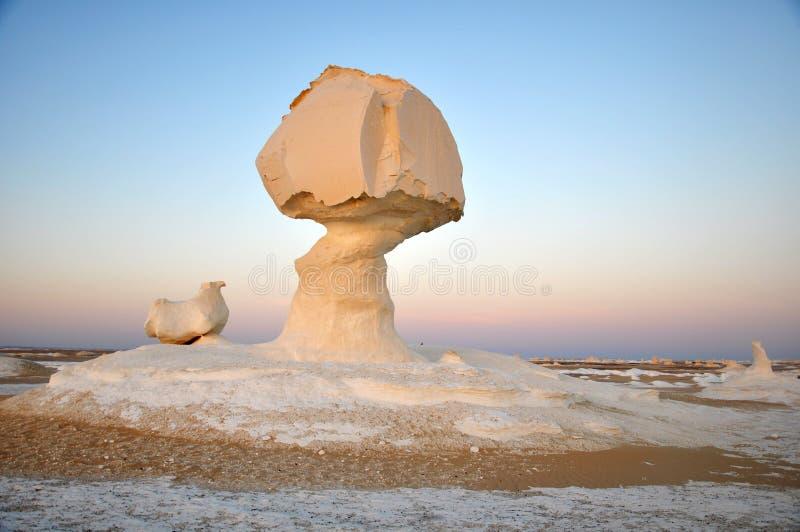 沙漠埃及白色 库存照片