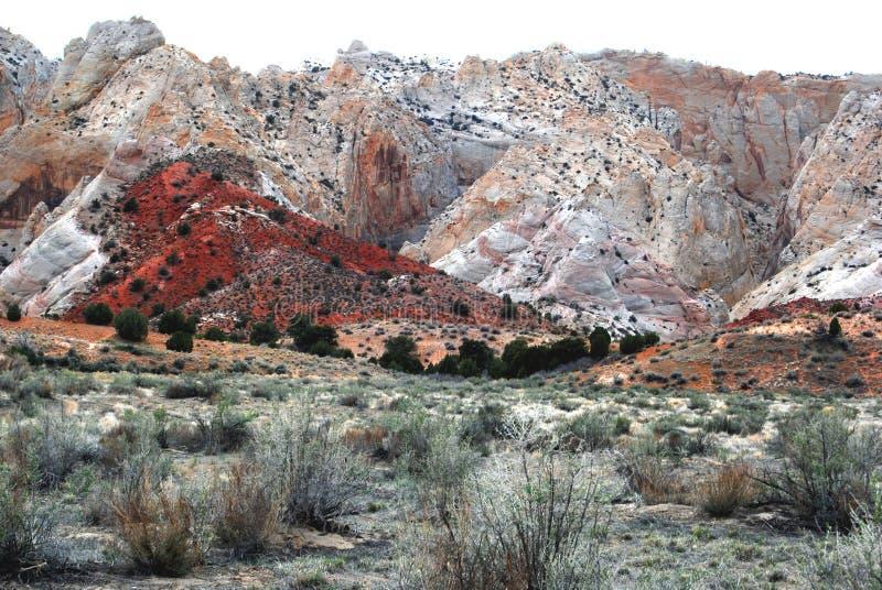 沙漠小山红色风景 免版税图库摄影