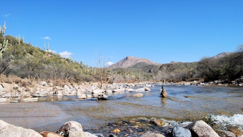 沙漠小河 库存图片