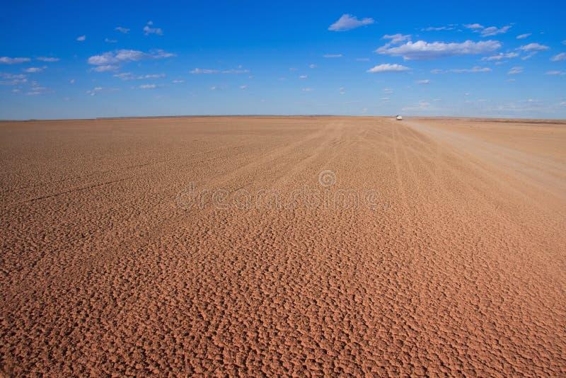 沙漠干燥平底锅 免版税图库摄影