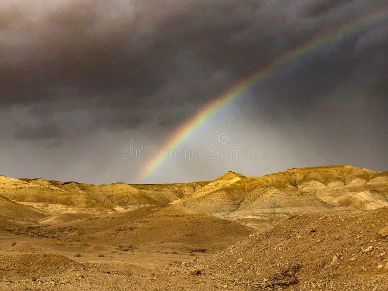 沙漠彩虹 免版税库存照片