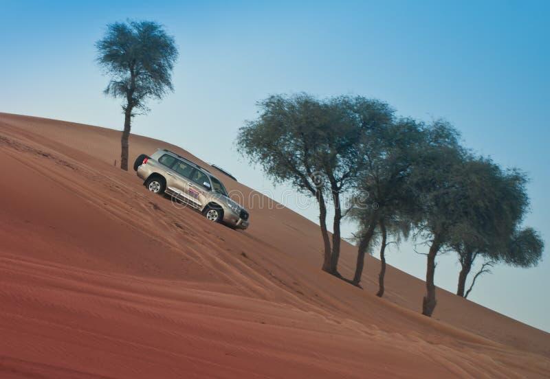 沙漠徒步旅行队 免版税库存照片