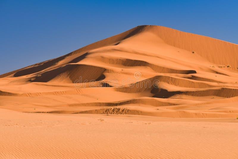 沙漠摩洛哥撒哈拉大沙漠 免版税库存照片