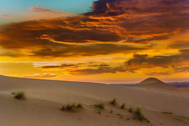 沙漠撒哈拉大沙漠日落 免版税库存照片